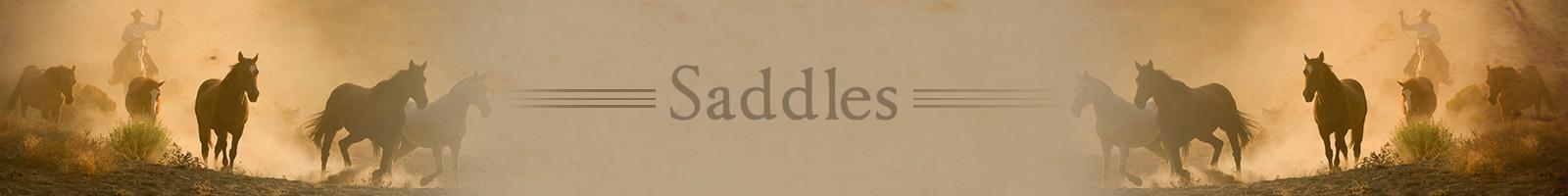 saddleshdr.png